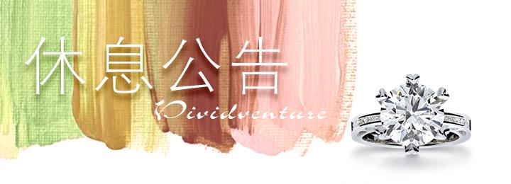 亞帝芬奇Vividventure